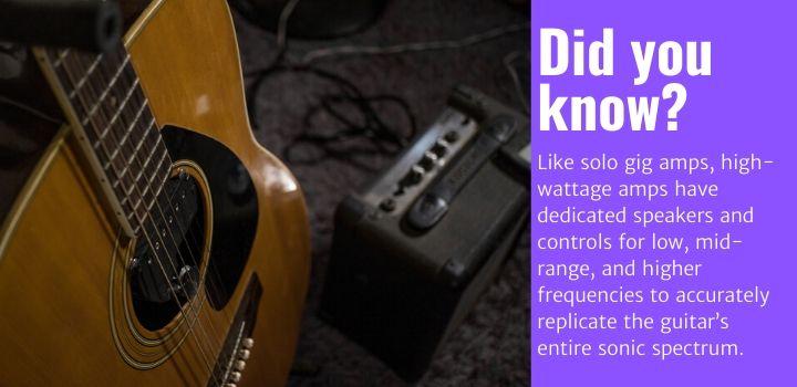 best acoustic guitar amps facts