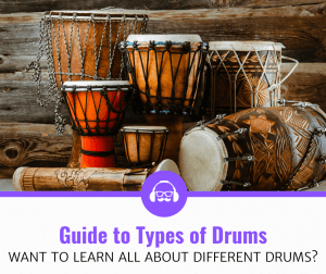 Ultimate Beginner's Guide To Different Types Of Drums